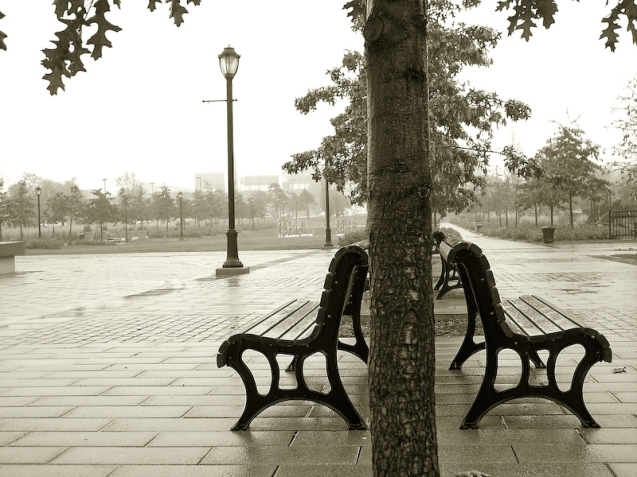 Park benches, black and white, sepia, B&W, lampost, trees